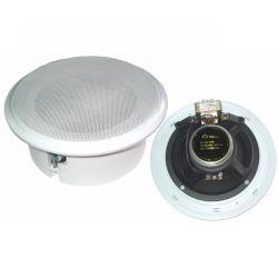 Głośnik sufitowy T209