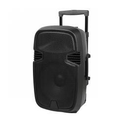 """Kolumna aktywna ( z 2 mikrofonami bezprzewodowymi, SD, Bluetooth, USB) 12"""" 30W"""