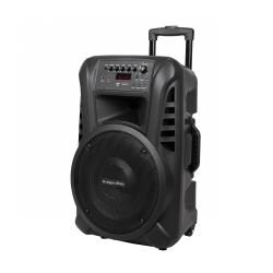 Aktywna kolumna głośnikowa (z 2 mikrofonami bezprzewodowymi UHF, SD, Bluetooth, FM, USB) 40 Watt
